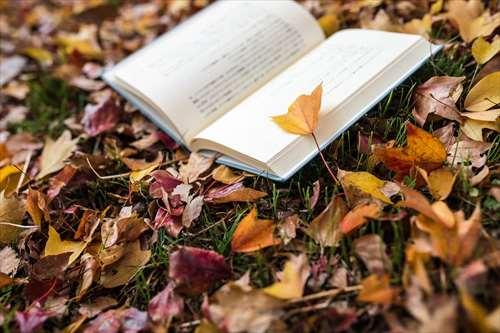 5.人を好きになれないときに読む本